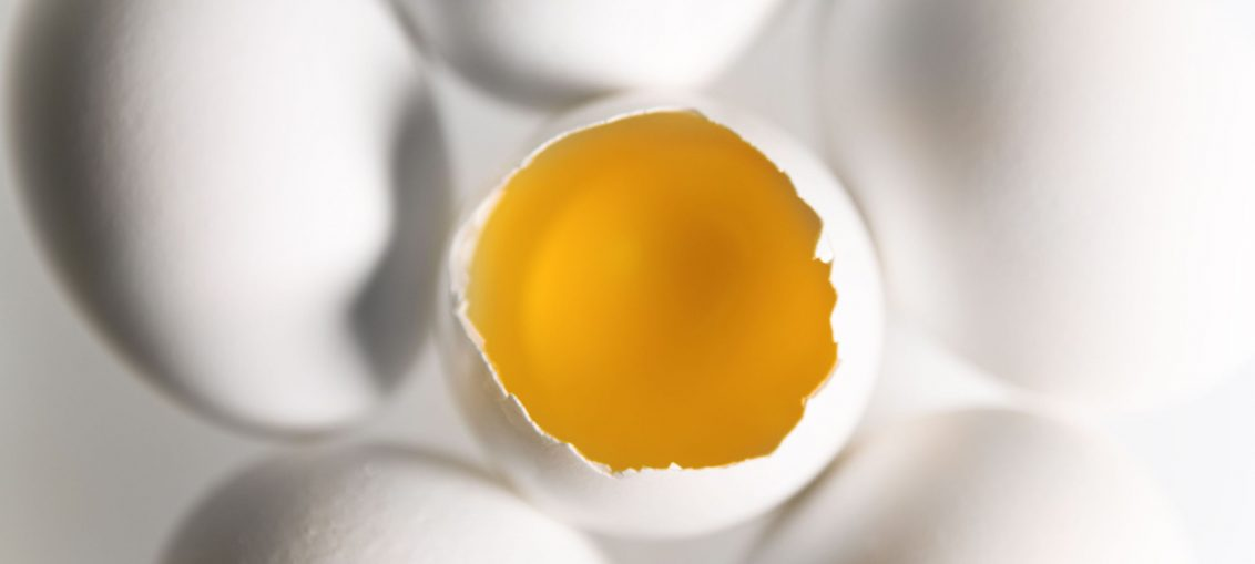 Ristorante The Egg