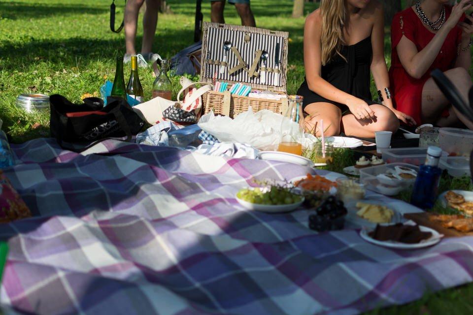 picnic primavera