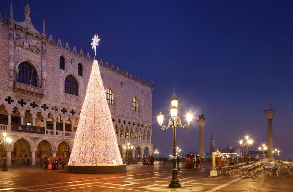 albero piazza san marco Venezia