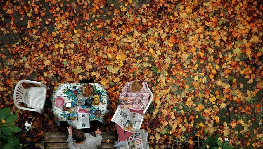 menu-autunnale-ricette-autunno