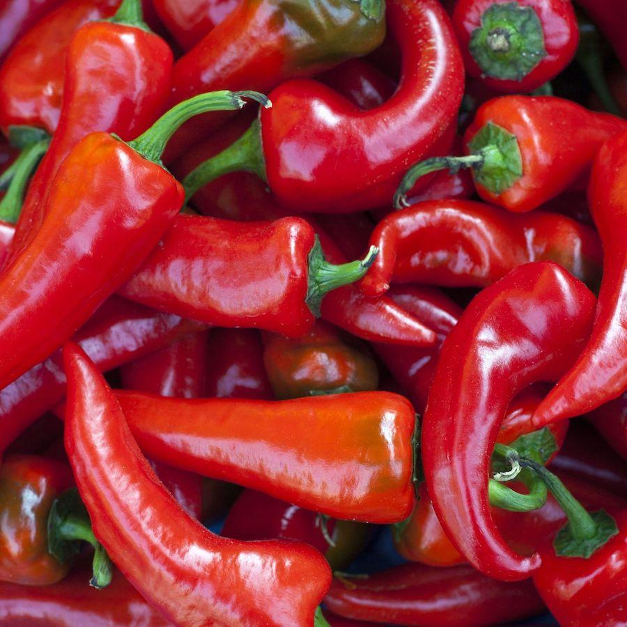 ricette-con-peperoni-rossi-varieta
