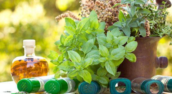 erbe-aromatiche-in-cucina
