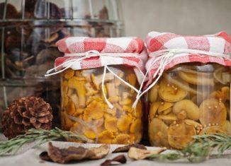 funghi-sott-olio-ricette