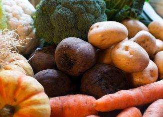 verdure-autunnali-elenco-ricette